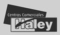Cliente Haley